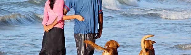 Już dziś ubezpiecz swego psa!