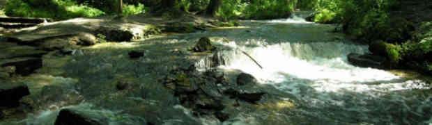 Wyjazdy integracyjne - spływy kajakowe